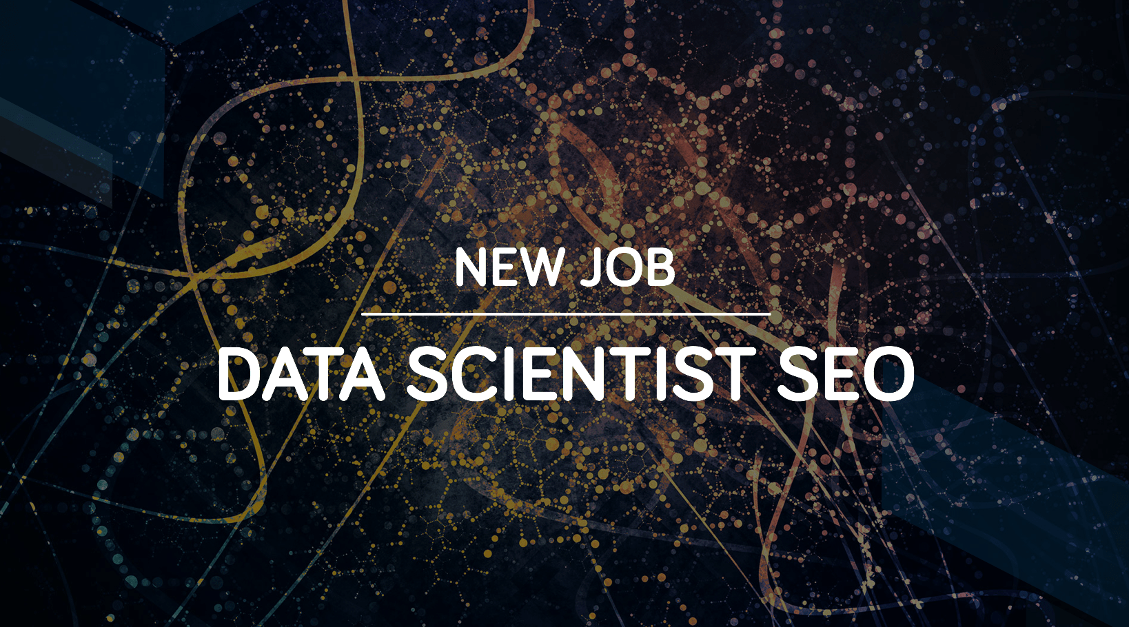 data scientist seo